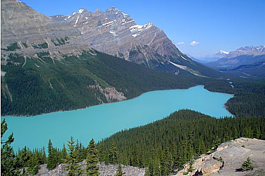 Peyto Lake. Banff National Park.